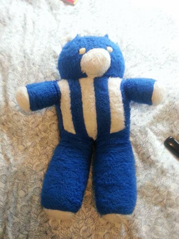teddybearincolour